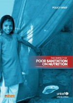 cover_chitty_impact-sanitation-nutrition